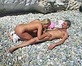 Téléchargement de Vacances cochonnes au bord de la mer