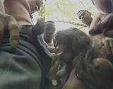 Téléchargement de Tigresse black se tape des mecs au parc animalier
