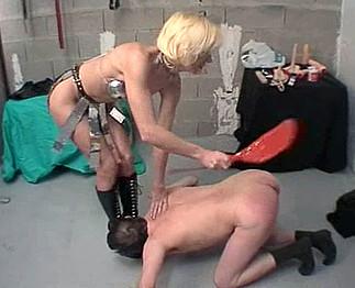 le sexe chien sexe collants