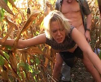 Bonne baise dans les champs